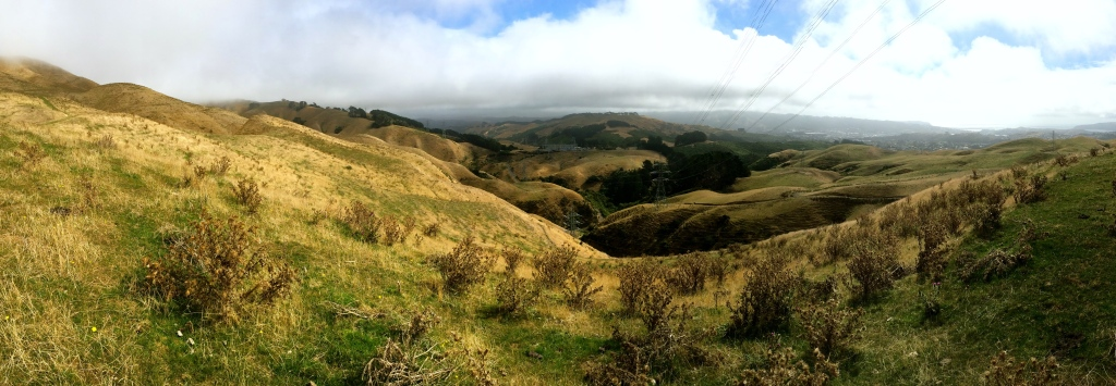 The view on our downward tramp after the fog finally cleared up!