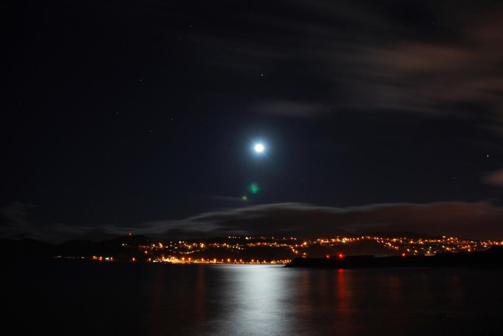 Moa Point, Wellington